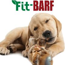BARF prehrana psov ikona